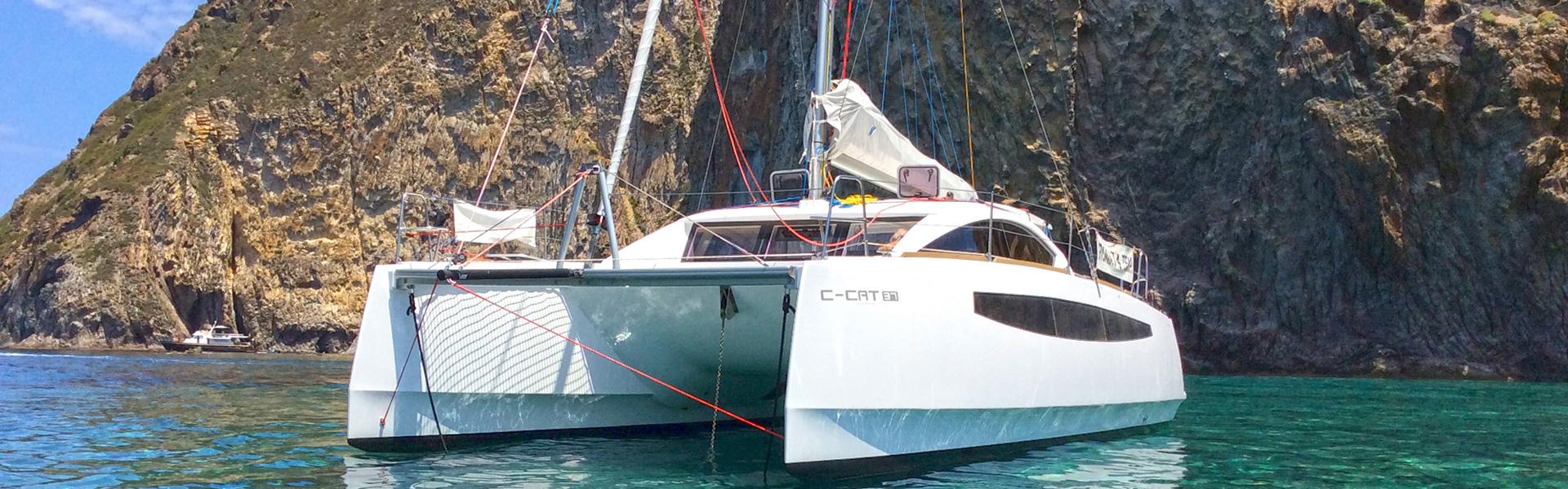 c-cat-371